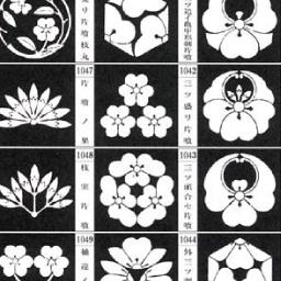 青幻舎ビジュアル文庫シリーズ