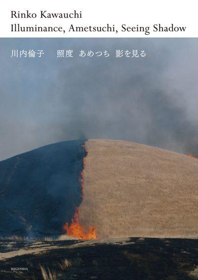 照度 あめつち 影を見る 川内倫子 Illuminance, Ametsuchi, Seeing Shadow Rinko Kawauchi