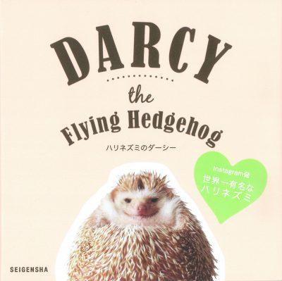 ハリネズミのダーシー 初回版「特製ステッカー」付き Darcy the Flying Hedgehog [ First edition with a sticker ]