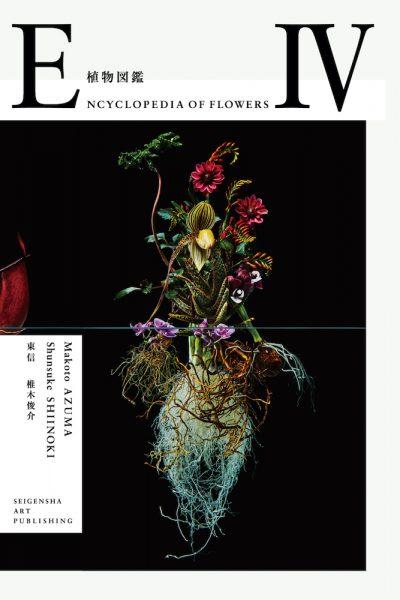 ENCYCLOPEDIA OF FLOWERS IV 植物図鑑
